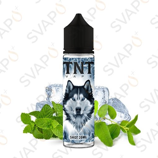 TNT VAPE - FROSKY 2040 Shot Series 20